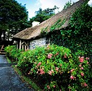Thatched cottage, Maam Cross, Connemara, county Galway, Ireland