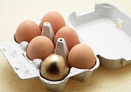 EGGS IN EGGBOX WITH A GOLDEN ONE, SYMBOLIC IMAGE FOR THE HEN AND THE GOLDEN EGG