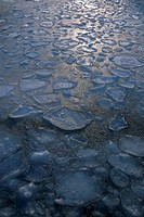 Ice floes in winter