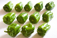 Concept Indian spice chilli green capsicum shimla mirch on white background , India