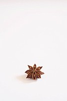 Chinese spice , Star Anise Anasphal Illicium verum on white background