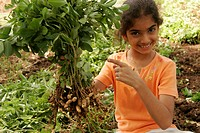 South Asian Indian girl showing and holding plant of groundnut MR191