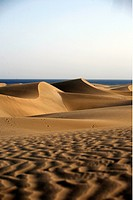 The sandy dunes of Maspalomas in sueden of the island grain Canaria on the Canary islands in the Atlantic, Spain.