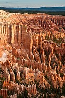 Bryce Canyon National Park, Bryce Point, Amphitheater, Rock formations and hoodoos in the morning, Utah, USA