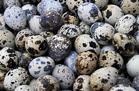 Bird eggs at a market in Bangkok