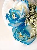 blue roses and white flowers