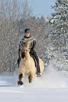 Young rider on an Icelandic horse galloping in deep snow