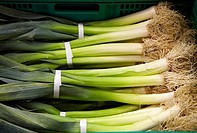 Leeks, Mercabilbao fruits and vegetables wholesale market, Basauri, Bilbao, Bizkaia, Euskadi, Spain