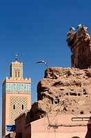 Minaret of Kasbah Mosque with flying and nesting White Storks in Medina ruin of Marrakech, Morocco