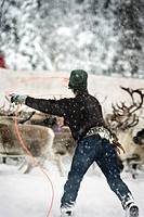 Person Lassoing Reindeer in Winter