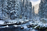 Bishop Creek after a fall snowfall, Sierra Nevada Mtns, California