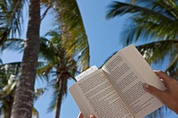 A young woman reads a book on the beach under palm trees