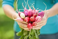 Woman holding a bunch of radishes