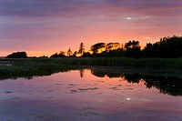Wetland at sunset, Urehoved, Denmark