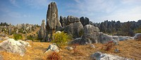 Stone Forest, Yunnan Province, China (thumbnail)