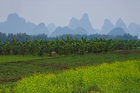 Mountains in the mist, Guilin, China (thumbnail)