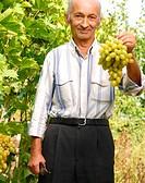 Senior vintner