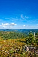 Panorama Hornisgrinde mountain, Black Forest, Baden_Wuerttemberg, Germany, Europe