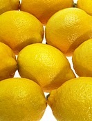 YELLOW LEMON citrus limonum AGAINST WHITE BACKGROUND