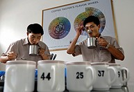 Taste testers Mr. Tam, left, and Mr. Hanh in the Cafecontrol Daklak branch of the Vietnamese Ministry of Agriculture in Buon Ma Thuot City, Vietnam, S...