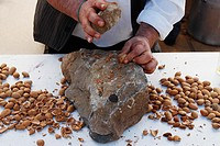 Opening almonds with stone at Fiesta del Almendro in Tejeda, Gran Canaria, Canary Islands, Spain