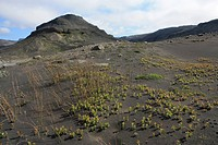 Iceland, volcano island, Europe, nature, scenery, landscape, lava, volcanism, volcano cinder, Solheimajökull, mountains