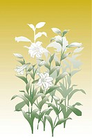 CG of Japanese Painting, Lily