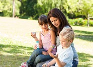 Family blowing bubbles in the park