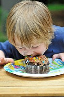 Little boy eating chocolate cupcake