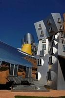 Frank Gehry´s Stata Center, MIT, Cambridge, Massachusetts
