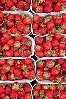 Germany, Munich, Strawberries in boxes at market