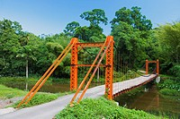 suspension bridge, Blanchisseuse, Trinidad