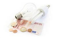 light bulb and energy saving lamp with euro money