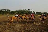The horse race or Ghora dabor is a traditional sporting event held on mud road or open field, right after harvesting in the wiinter at Sorsona, Lohago...