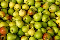 Fresh Pears & apples