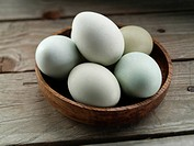 A bowl of blues free range eggs