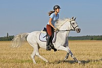 young woman riding on Bavarian warmblood horse