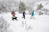 High angle side view of three adults and one dog walking on a trail in the snow in Bend, Oregon.