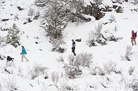 Side view of three adults and a black dog walking on a trail in the snow in Bend, Oregon.