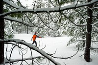 One young woman cross country ski´s on a trail in the snow in Bend, Oregon blurred motion.