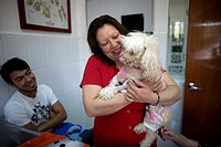 A woman holds her Poodle dog at a Pet Hospital in Condesa, Mexico City, Mexico, February 9, 2011