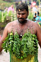 Image of a Hindu devotee, Malaysia, Kuching, Thaipusam Hindu festival