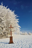 Europe, Germany, Baden_Württemberg, View of winter landscape