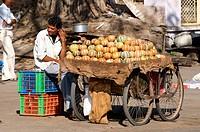India, Rajasthan, Jaipur, fruits seller