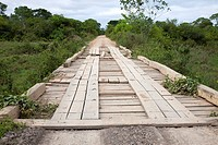 Transpantaneira with timber bridge, Pantanal, Mato Grosso, Brazil
