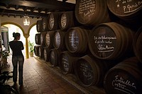 Hall with oak wine from Córdoba, signed and dedicated by people who have been there  Winerys Campos, Cordoba, Andalucia, Spain