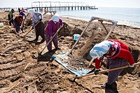 Turkish women working on the beach at Belek, cleaning the sand of all stones, in time for the tourist season, by sifting the sand through a metal gril...