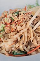 Stir fried Chicken noodles garnished with nuts