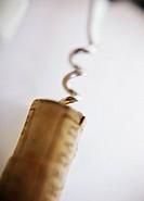 cork screw in a cork