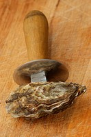 one raw organic oyster and a knife to open